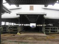 牛舎1.jpg